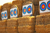 Bow targets in a row — Stock Photo