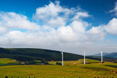 Wind-mill electric generating plants — Stock Photo