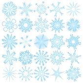 Set of 25 snowflakes — Stock Vector
