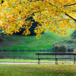 Empty bench in park — Stock Photo #2374472