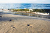 Baltic sea beach in Jurata — Stock Photo