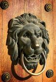 Lion head door knocker — Stock Photo