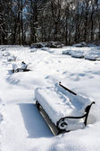 Empty benches in the snow — Stock Photo