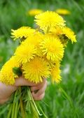 Dandelion in the childrens hand — Stock Photo