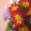 Flowers bouquet close up — Stock Photo #2284512