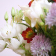 Flowers bouquet close up — Stock Photo #2284543