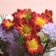 Flowers bouquet close up — Stock Photo #2284645