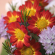 Flowers bouquet close up — Stock Photo