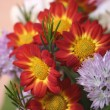 Flowers bouquet close up — Stock Photo #2284822