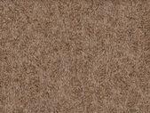 Rabbit fur texture — Stock Photo