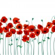 Vector de stock : Red poppies