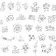 Royalty-Free Stock Imagem Vetorial: Sketch of flowers