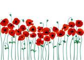 Rote mohnblumen — Stockvektor