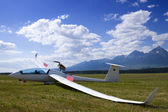 Grounded glider — Stock Photo