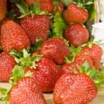 Strawberries — Stock Photo #2380287