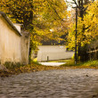Cobbled street in autumn — Stock Photo