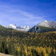Mountain in autumn — Stock Photo