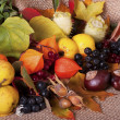 Colorful autumn arrangement - Stock Photo
