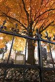 Cemetery in autumn — Stock Photo