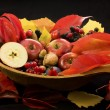 Fall still life — Stock Photo