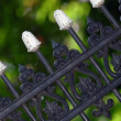 Old fashioned metal fence — Stock Photo