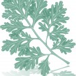 Wormwood leaf - Stock Vector