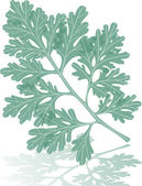 Wormwood leaf — Stock Vector