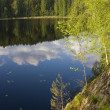 Wild forest lake in Karelia — Stock Photo