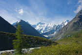 Ak-Kem river near mt. Belukha, Altai — Stock Photo