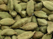 Macro view of cardamon .Close up. — Stock Photo