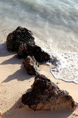 Beach — Stockfoto