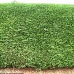 Green textures — Stock Photo #2272414
