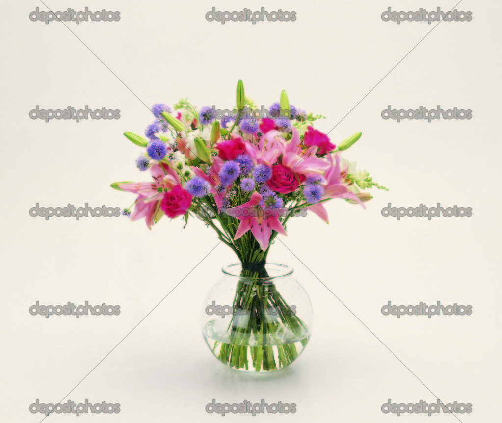 Floral Design Elements — Stock Photo #2305072