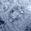 Frosty pattern — Stockfoto