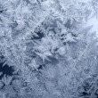 frosty pattern — Stock Photo
