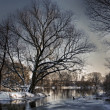 Winter river — Stockfoto