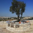 Mount of olives — Stock Photo #2453478