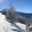 Snowboarding in Bulgaria. Borovets — Stock Photo #2453865