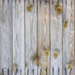 Stock Photo: Old wooden plank background