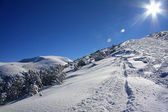 Shining sun in winter mountains — Stock Photo