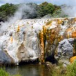 Pohutu Geyser, New Zealand - Stock Photo