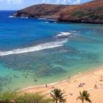 Hanauma Bay, Oahu, Hawaii — Stock Photo #2270391