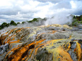 Pohutu Geyser, Rotorua, New Zealand — Stock Photo