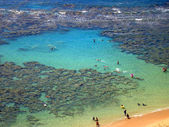 Aerial view of Snorkelers, Hawaii — Stock Photo