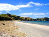 Whangapoua Beach, New Zealand — Stock Photo
