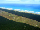 Aerial of Aupouri Forest Pine Plantation — Stock Photo