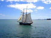 Tall Ship sailing in New Zealand — Stock Photo
