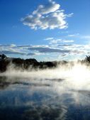 Geothermal activity, New Zealand — Stock Photo