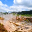 Geothermal Activity of Karapiti, NZ — Foto de Stock