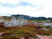 Geothermal Activity of Karapiti, NZ — Stock Photo